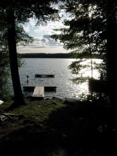 Pine woods and beautiful lake.
